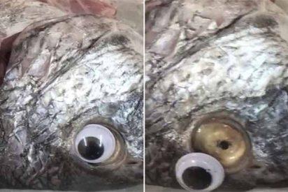 Clausuran una famosa pescadería de Kuwait por la tremenda trampa que hacía a sus clientes
