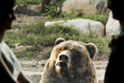 La reacción de este oso ante una pareja casándose en el zoo lo peta en Internet