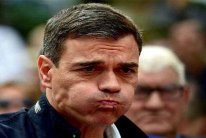 Antes de que le regalaran un 'cum laude' y como no le bastaba el 'negro', el tramposo Sánchez pidió ayuda a los usuarios de Twitter