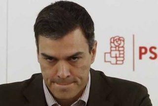 'Tesis Sánchez': El Gobierno socialista se 'caga' y no se querellará contra ABC