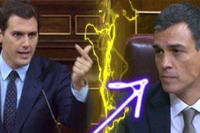 Albert Rivera vuelve a pedir a Sánchez que muestre su tesis y Pablo Iglesias defiende al 'plagiario'
