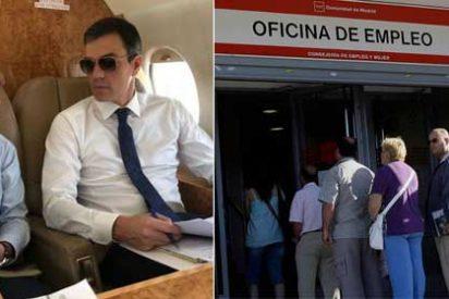Twitter explota contra Pedro Sánchez por los horrendos datos del paro: menos Franco y más crear empleo