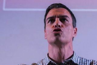 El contumaz Sánchez se licencia como doctor 'cum fraude': su tesis está plagiada en un 21%