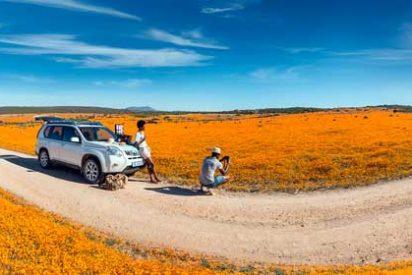 La increible floración en el desierto de Kalahari