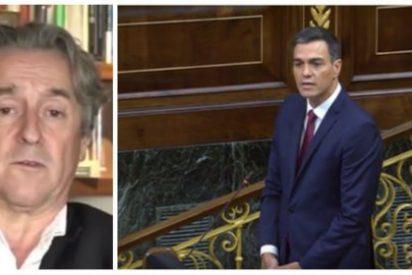 """Hermann Tertsch acribilla a Pedro Sánchez por negarse a enseñar su tesis: """"Es un peligroso desequilibrado"""""""