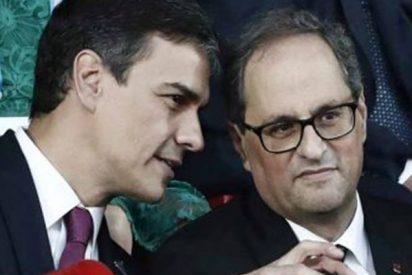El xenófobo Torra le mea encima y Pedro Sánchez insiste en que sólo llueve