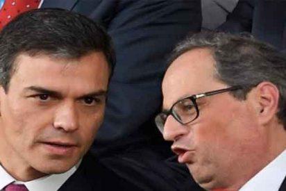 Los golpistas catalanes le mean encima y el socialista Pedro Sánchez dice que llueve