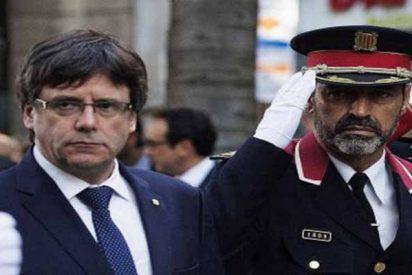 """Cataluña: Trapero facilitó """"información crucial"""" para ayudar a los golpistas el 1-O"""