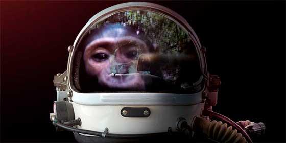 Pasa el puente entre robots e inteligencia artificial