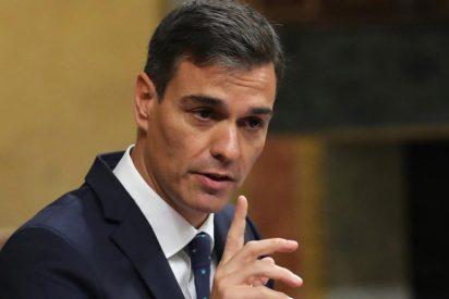 El olvidado vídeo del pajarraco Sánchez acusando a Rajoy de dar alas al independentismo