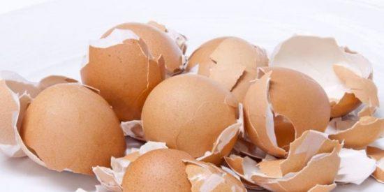 Huevos: Las mejores ideas para reciclar las cáscaras