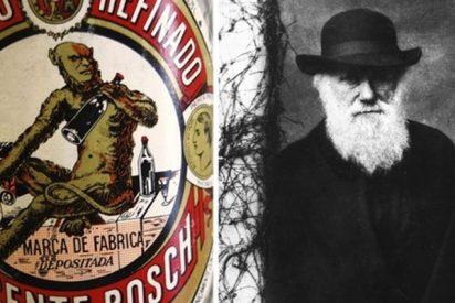 ¿Sabías que el simio de la etiqueta del 'Anís del Mono' tiene la cara de Darwin?