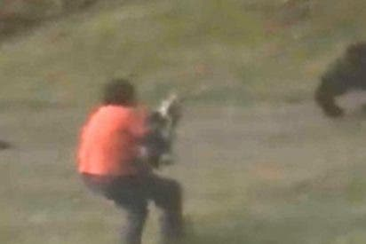 Mujer graba el dramático momento en el que su marido dispara a la osa que carga contra él