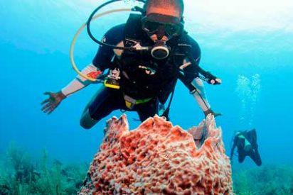 La Gran Barrera de Coral de Belice
