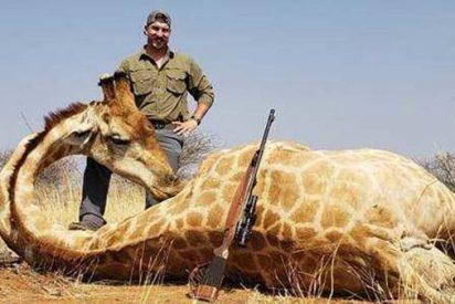 Un cuidador de fauna se 'desestresa' matando a 14 animales salvajes