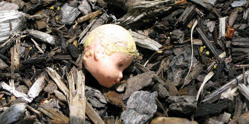 """¡Horrible!: Torturan, decapitan y desmiembran a un bebé en un brutal acto """"diabólico"""""""
