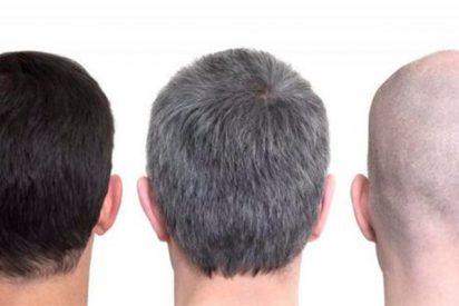 ¿Adiós a las canas?¡Varias personas recuperan el color de su cabello con una fórmula increíble!