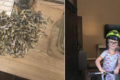 Este niño mete en una trituradora de papel los ahorros de sus padres y ahora intentan recuperarlos