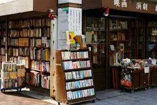 Qué ver y hacer en Tokio este otoño
