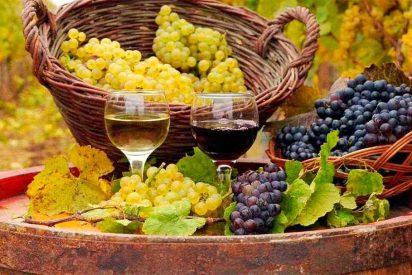 Nace la marca 'Rutas del Vino Castilla y León'