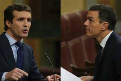Euforia en el PP tras el 'baño' que le ha pegado Pablo Casado a Pedro Sánchez