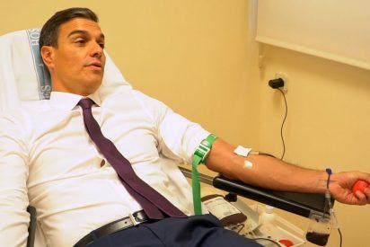 """""""Iglesias no puede donar sangre porque lo suyo es un componente entre ácido sulfúrico y caspa licuada"""""""