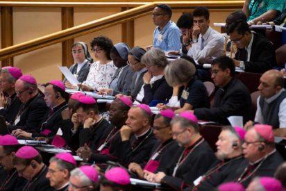 """La declaración del Sínodo planteará una """"reforma histórica"""" para erradicar la pederastia en la Iglesia"""