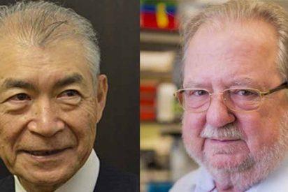Premio Nobel de Medicina para el estadounidense James P. Allison y el japonés Tasuku Honjo