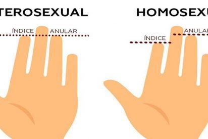 ¿Sabías que la longitud del anular y el índice podría revelar tu orientación sexual?