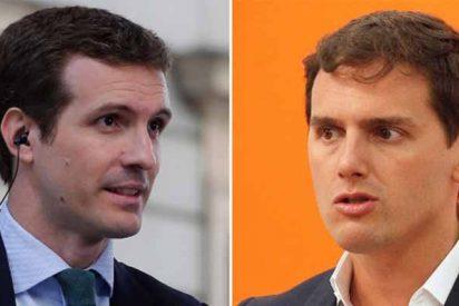 Una trifulca gilipollas entre PP y Ciudadanos que sólo beneficia al plagiario Sánchez
