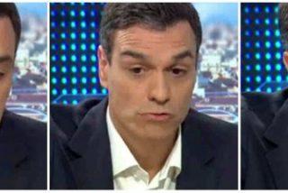 "Salvador Monzó Romero: ""De Novios a Pareja de Hecho"""