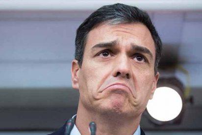 Pedro Sánchez no se baja los pantalones ante los golpistas, los lleva doblados en el antebrazo