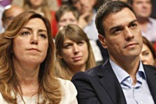 A Susana Díaz le huele el culo a pólvora tras ser 'condenada' por Pedro Sánchez
