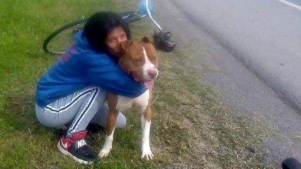 """Roko, el perro uruguayo que estuvo """"preso"""" un mes"""