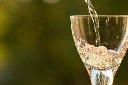 Una gran oferta gastronómica y de restauración convierten al Penedés en una de las zonas enoturísticas más visitadas de España