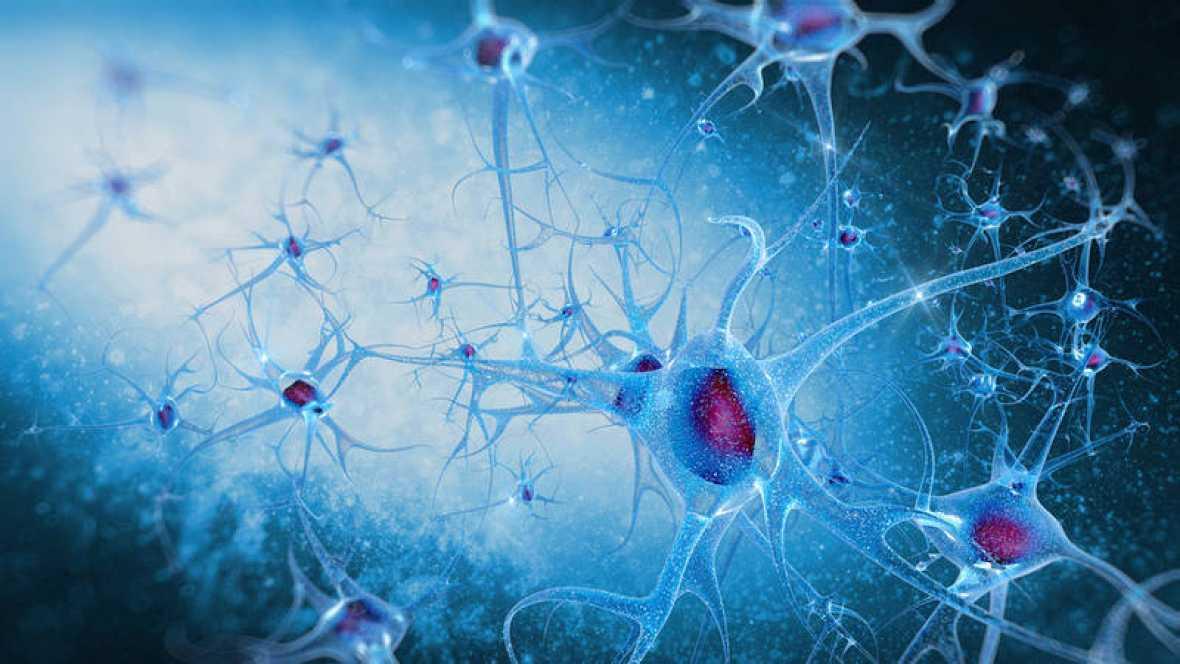 ¿Dónde está la conciencia cuando nuestro cerebro no recibe oxígeno?