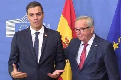 ¿Has visto el zasca que Juncker le pega a Sánchez cuando el 'okupa' intenta vender sus presupuestos?