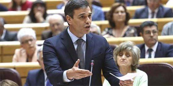 Los diez segundos del vivales Pedro Sánchez que dan matarile a su tesis para plantar al Senado