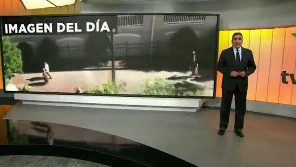 """Noticiero en México confunde y transmite una escena de """"Capitán América: Civil War"""" como un accidente real"""