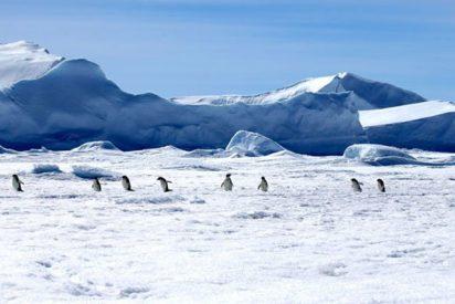 Encuentran un continente perdido debajo del hielo de la Antártida