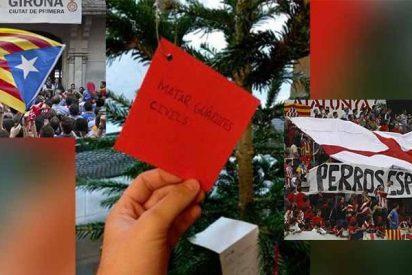 En la Universidad de Gerona cuelgan en el árbol de Navidad el deseo de 'matar guardias civiles'