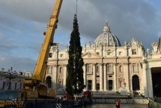 Pesebre de arena y árbol de la ciudad de Pordenone en el belén del Vaticano
