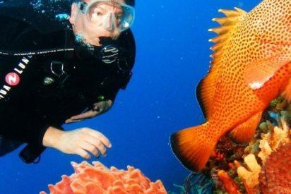 La importancia de conservar los arrecifes de coral