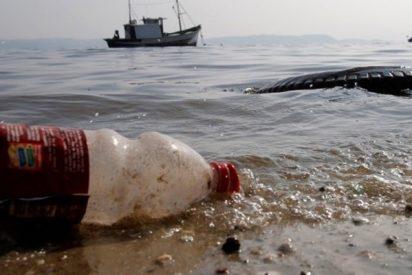 Pescador extrae una botella de plástico de medio litro del estómago de un pescado