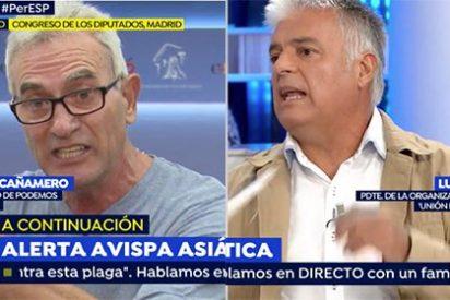 """Un empresario agrícola fulmina al 'jornalero' que no ha cogido una azada en su vida: """"¡Tú no eres obrero! ¡No digas tonterías!"""""""