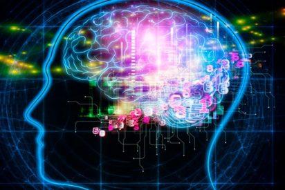"""""""La conciencia no distingue entre cerebros biológicos y circuitos de silicio"""""""