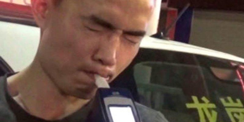 Un chino borracho compra online: un pavo real, un cerdo vivo y una salamandra gigante