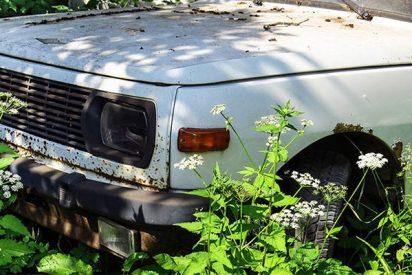 Un sacerdote ucraniano irrumpe en un jeep en un cementerio y destroza varias tumbas