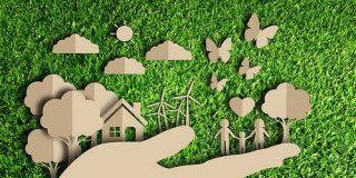 LLega la 'Revolución verde' andaluza