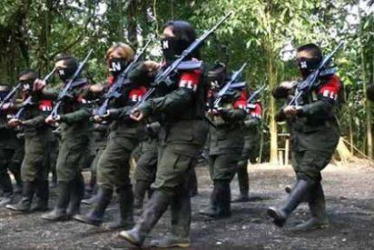 InSight Crime: El grupo guerrillero ELN tiene presencia en 12 estados de Venezuela